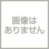ドラクエ10(DQX)-ドラクエ10 引退アカウント オーガ女