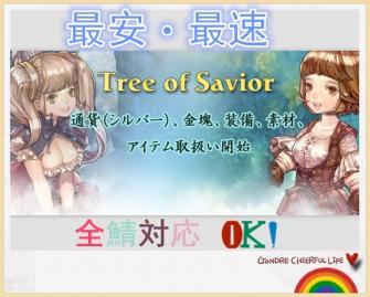 ツリーオブセイヴァー(TOS)-Tree of Savior(Tos) 全鯖対応 1億シルバー 激安価格