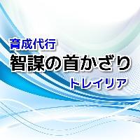 智謀の首かざり 理論値 ギュメイ将軍のアクセサリー【実作業2日】|ドラクエ10(DQX)