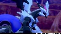 【色違い】☆合体キュレムセット☆|ポケットモンスターソード・シールド(ポケモン剣盾)