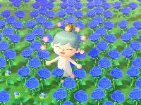 青 あつ バラ 作り方 森