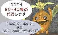 BO・HO稼ぎ 育成代行いたします~【のぞみん】(オクでは評価250以上)|ドラゴンズドグマオンライン