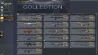 引退|Alliance of Valiant Arms(AVA)