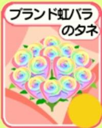 虹種50個 農園婚活