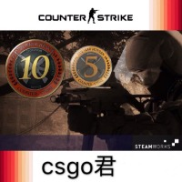 10年アカウント|Counter-Strike: Global Offensive(CS: GO)