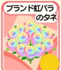虹種50個|農園婚活