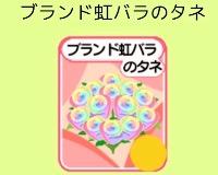 虹薔薇の種100個セット|農園婚活