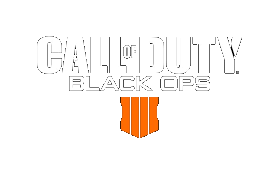 Call of Duty4(CoD:BO4)のアイテム