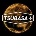 TSUBASA+(ツバプラ)のアカウントデータ